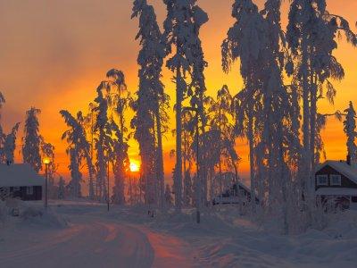 Sonnenaufgang über Lappland